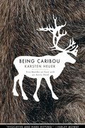 BEING CARIBOU (P)